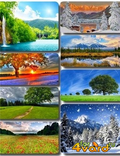 Wallpapers HD Instant nature imprinted camera